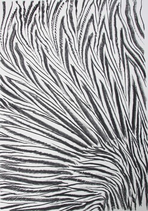 Felix Thyes, Flammenstrauss, 2017, Kohle auf Papier, 70 x 100 cm